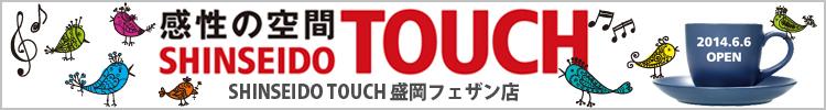 touchfesan_365